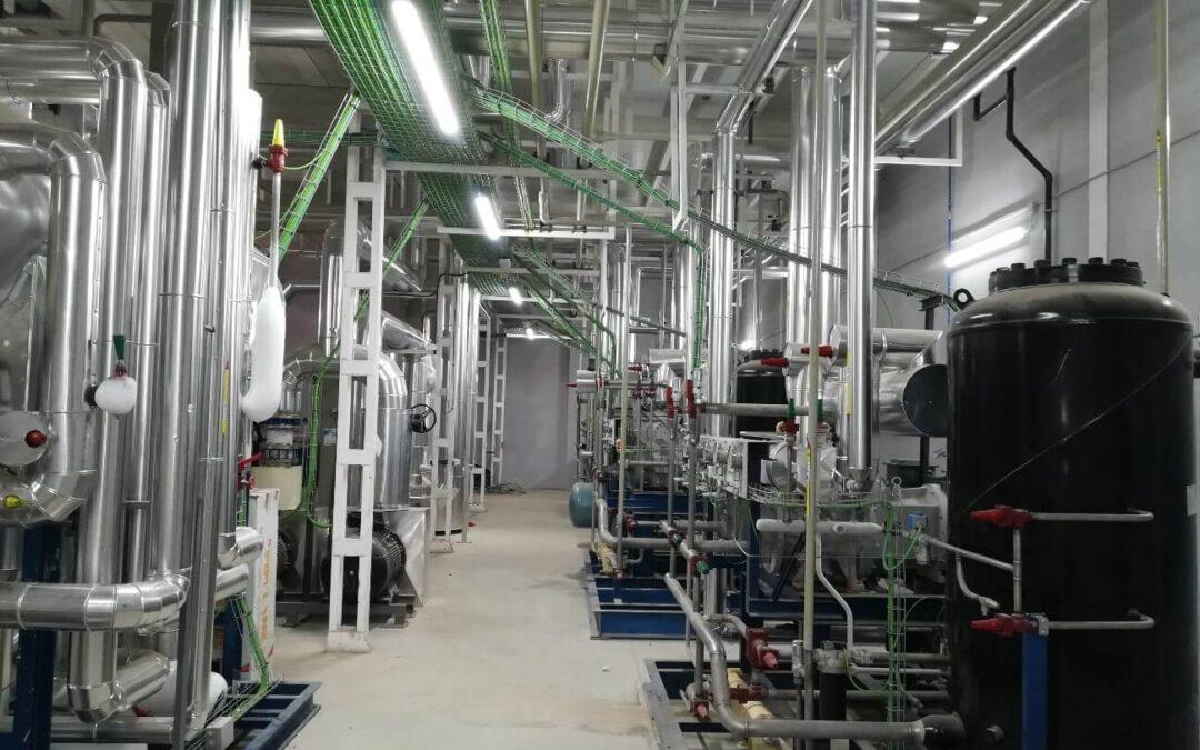 Primera planta de Europa para la producción de frutas y hortalizas congeladas.